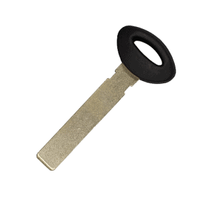mini cooper valet key